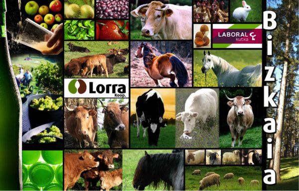 Lorra